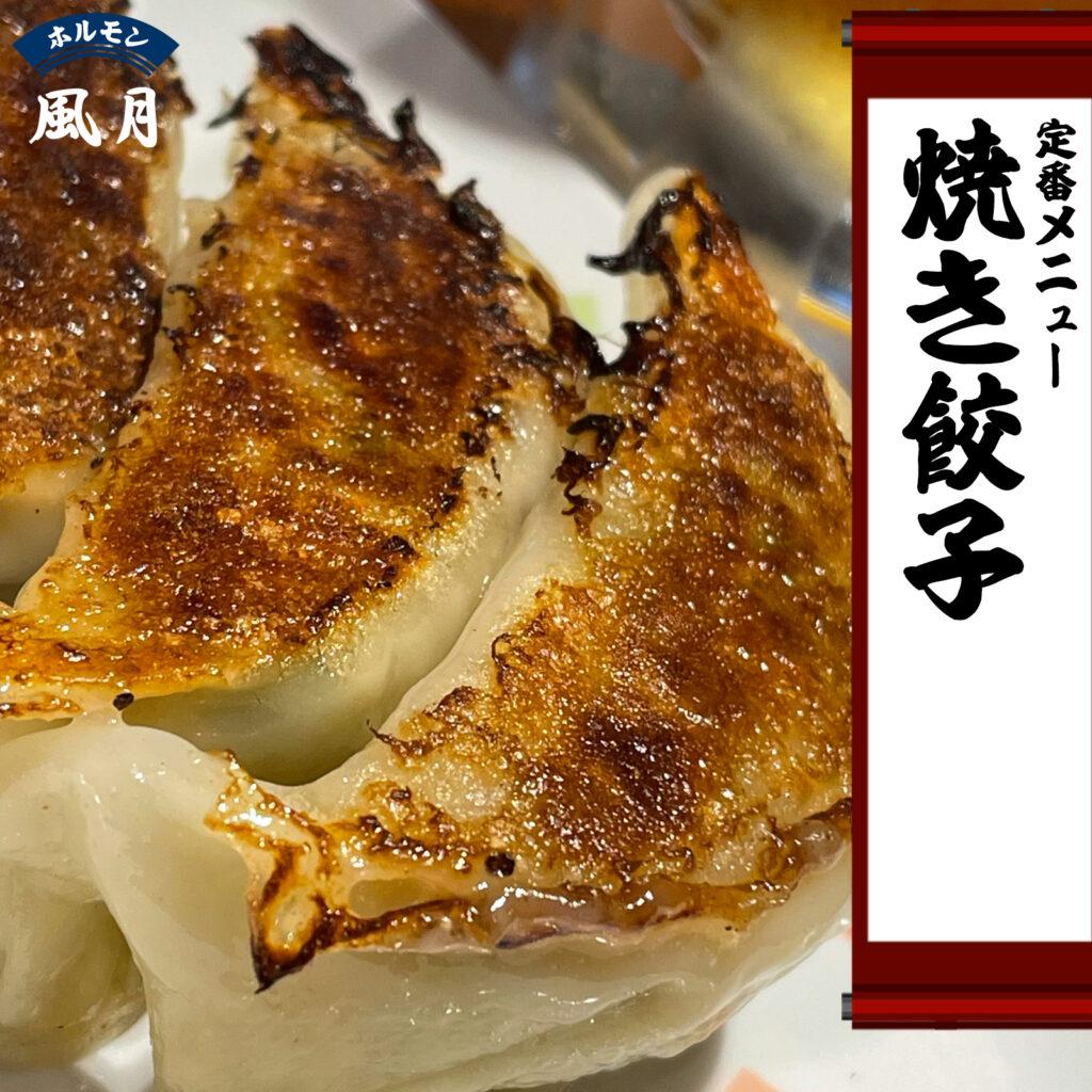 焼き餃子:ホルモン風月のテイクアウト